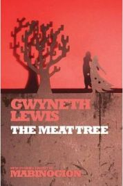 The Meat Tree (New Stories from the Mabinogion) By Gwyneth Lewis,  book review