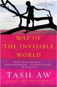 Map of the Invisible World, Tash Aw, book review