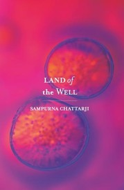Land of The Well by  Sampurna Chattarji, book review