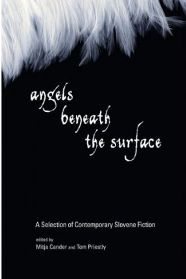 Angels Beneath the Surface: A Selection of Contemporary Slovene Fiction edited by  Mitja ?ander and Tom Priestly, book review