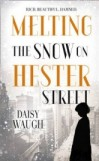 Melting the Snow on Hester Street , Daisy Waugh, book review